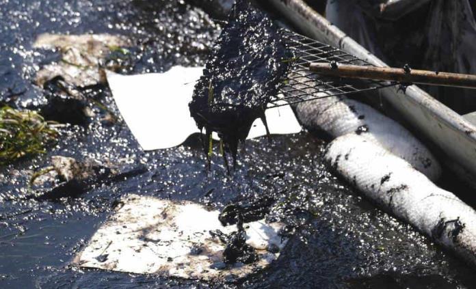 Diario La Verdad - Temen que California tarde años en recuperarse del  desastre ambiental